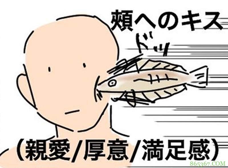 """亲吻身体各个部位代表什么意思 让这条""""亲吻鱼""""告诉你"""
