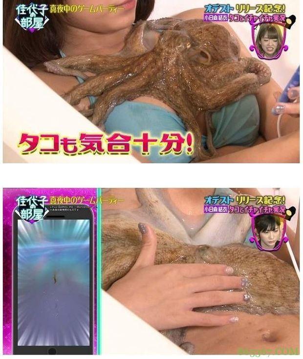 女星躺在浴缸被章鱼调戏 下一秒竟往私密处狂钻