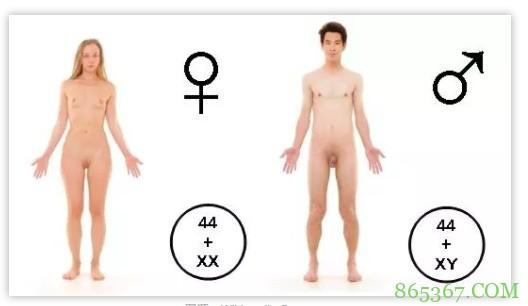 男人进入女人是啥感觉 男女对待性行为各有不同的想法