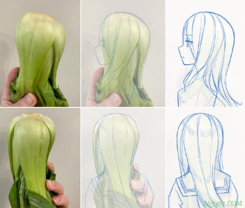 画师大佬分享画动漫美少女的方法:首先,你需要一颗青菜