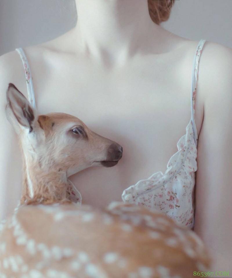 少女情怀总是诗