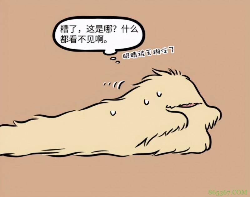 非人哉:杨戬原来是终极福瑞控?梦想是自己也变成毛茸茸
